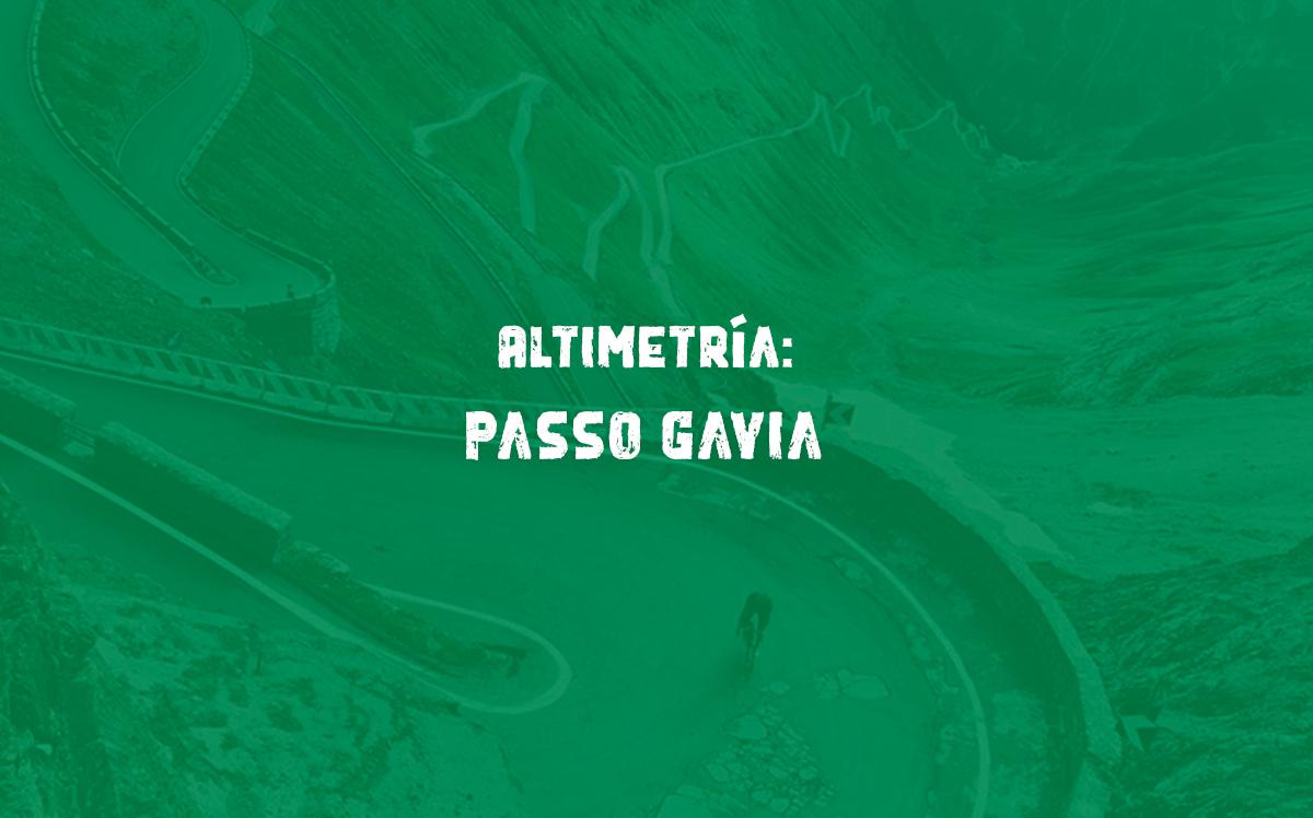 Altimetría del passo Gavia